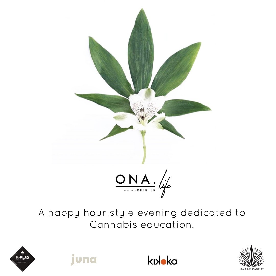 Mom's Night Out – Cannabis 101